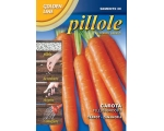 CARROT TELLUS F1 - *PROFESSIONAL PELLETED SEED**