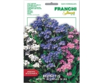 FORGET-ME-NOT ON SALE - SAVE 46P