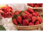 STRAWBERRY PLANT MAYA UK ONLY. Pre-order now fo..