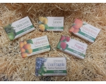 GP FRUIT SOAPS