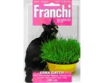 CATNIP / CAT GRASS