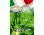 SWISS CHARD CHEF RANGE IN..