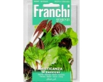MIXED CUTTING RADICCHIO´S AND CHICORIES RESTAUR..