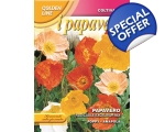 POPPY NUDICALE EXCELSIOR MIX