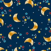 Space Adventure - Moon and Stars Navy