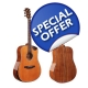 Alston All Solid Acoustic Guitar A..