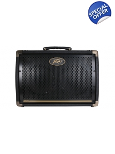 Peavey Acoustic Guitar Amp Ecoustic E208