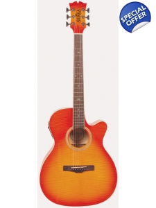 Sunrise Auditorium Guitar with hard sh..