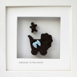Welcome to the World - New B..