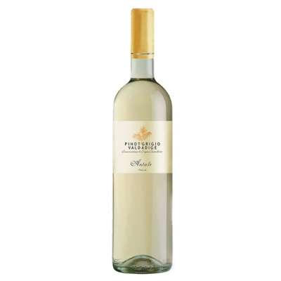 Antale Pinot Grigio 2014 - Italy title=