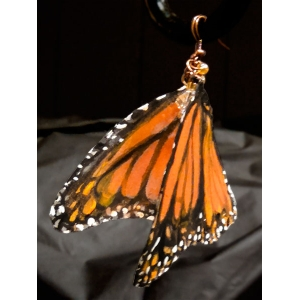 Monarch Butterfly Earri..
