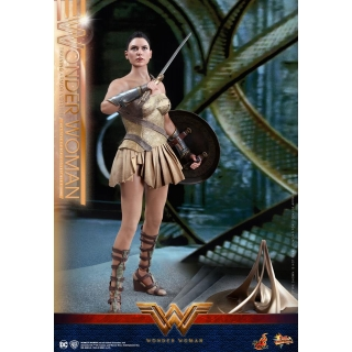 Hot Toys Wonder Woman 1/6th scale Wond..