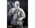Hot Toys-MMS 193-GI Joe:Retaliation Storm Shadow