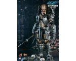 Hot Toys MMS221 - Alien vs Predator: 1/6th scale..