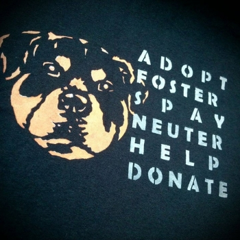 Rotty Adopt/Foster..