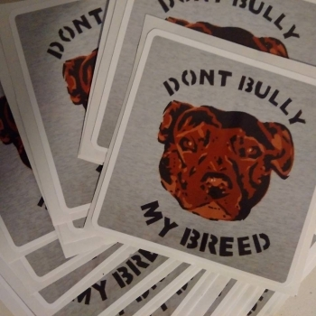 LAPTOP STICKER Dont Bully My..