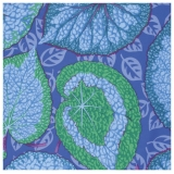 Kaffe Fassett Collective, Fall 2014 - ..