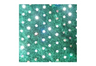 Green Sparkle hoody