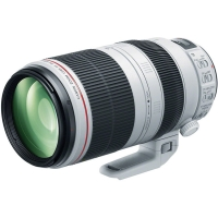 Canon EF 100-400mm f4.5-5.6L IS I..