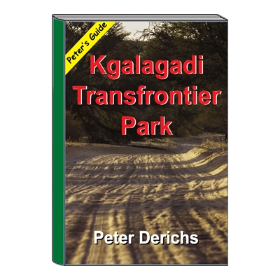 Peter's Guide to Kgalagadi Transfrontier Park