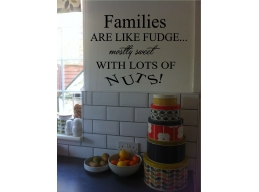 Families Are Like Fudge..