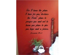 For I know the plans I have for you Jeremiah 29:11 Wall lettering