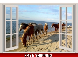 Horses Ocean Window Vie..