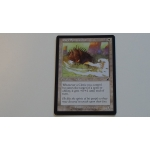 daru spiritualist magic the gathering mtg