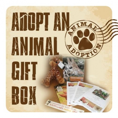 Gift Box - Adopt an animal