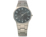 Skagen Denmark Mens Watch Titanium Links for Men..