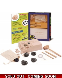 Wrapped Grotto Toys - Meteorite Dig Out Kits x6