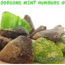 Mint Humbugs suitable for Vegetarians Gluten Free Sweets