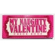 MY NAUGHTY VALENTINE CHECK BOOK