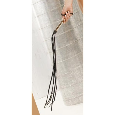 leather whip with sliver handle