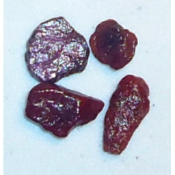Ox Blood Ruby Rough 14 cts 9..