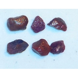 Ox Blood Ruby Rough 20 cts 8..