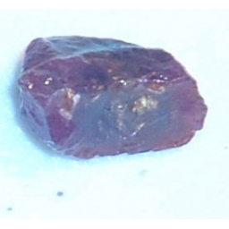 Ox Blood Ruby Rough 7 cts 15..