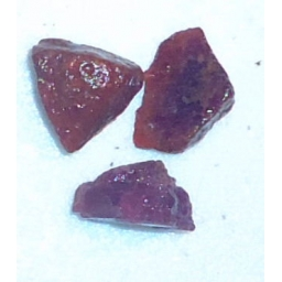 Ox Blood Ruby Rough 15 cts 1..