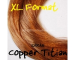 Copper Titian
