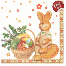 Napkins lunch size 33x33 - E..