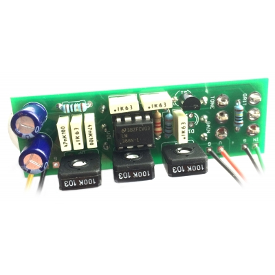 Ruby / Noisy Cricket Mini Guitar Amp - board-mounted controls