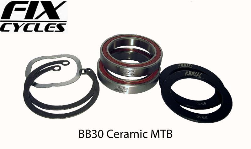 how to fix squeeking disc brakes mtb