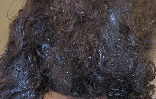Home Hairdetanglers School Professional Hair Detanglers