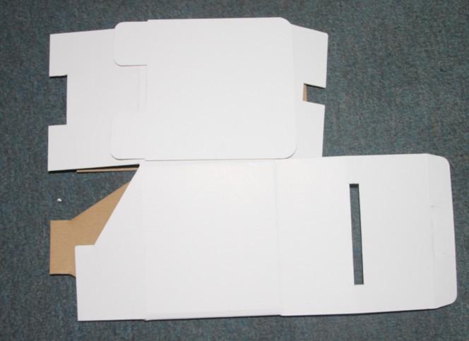 Cardboard Ballot Suggestion Box With Header