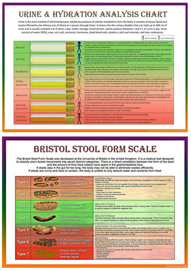 urine analysis normal values pdf