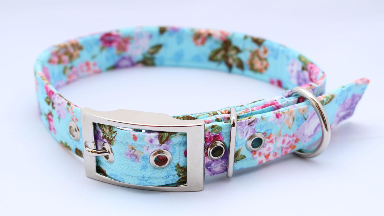 Blue Roses Buckle Dog Collar b4074b2f852