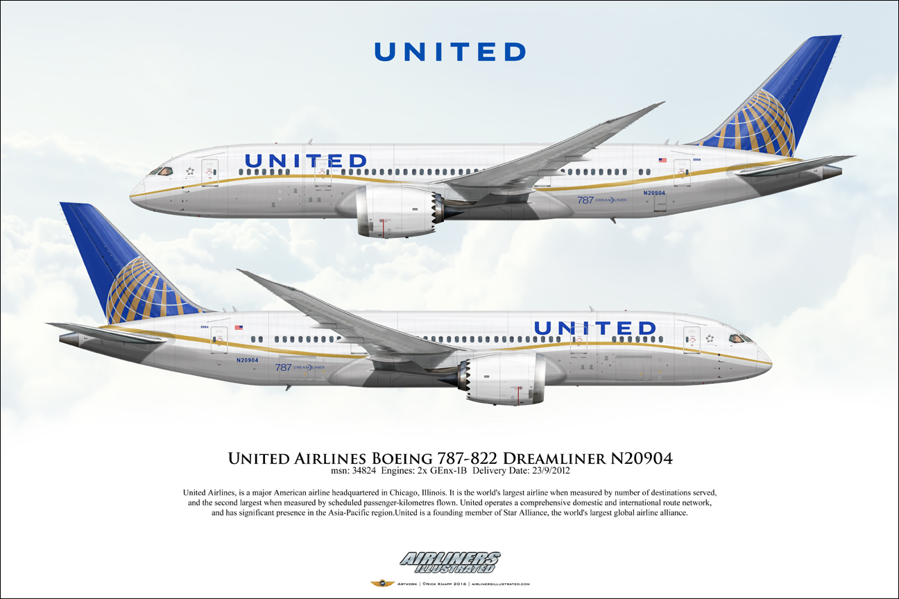 United Airlines Boeing 787 822 Dreamliner N20904