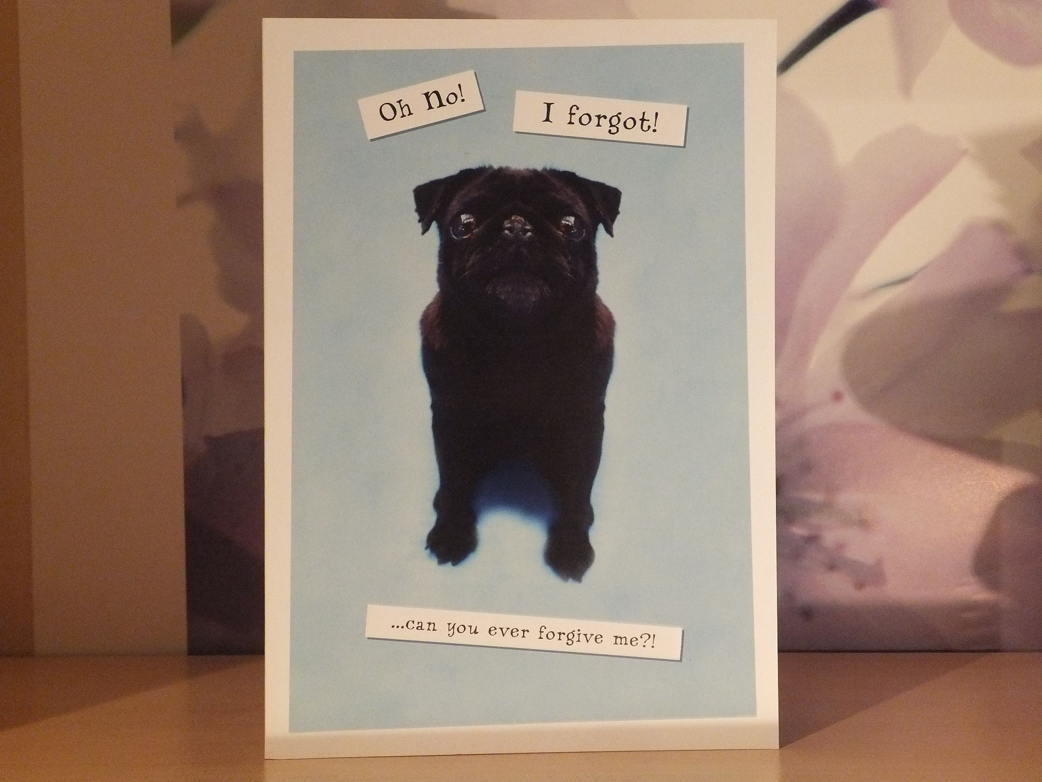 BELATED BIRTHDAY CARD PUG OH NO I FORGOT