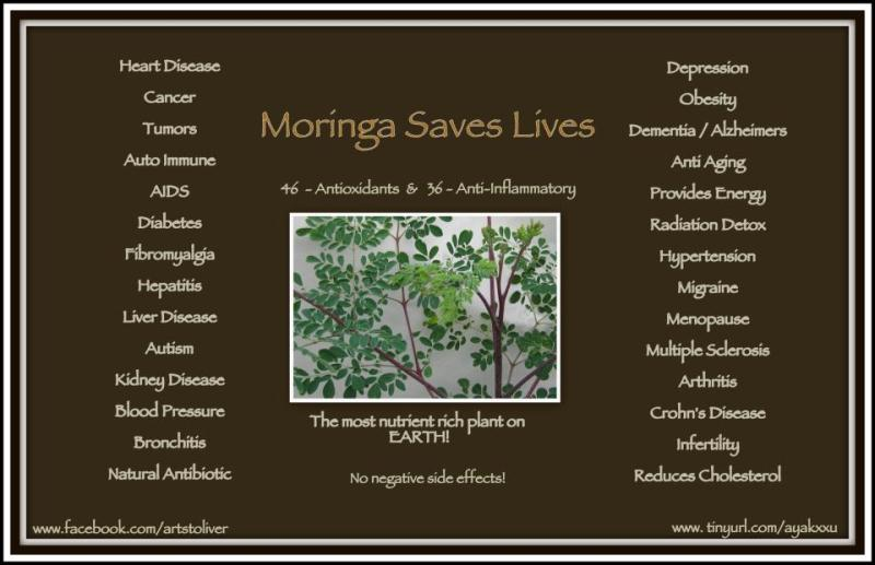 Moringa Nutritional Powerhouse - Good for cancer, aids, diabetes, heart disease, health, well b