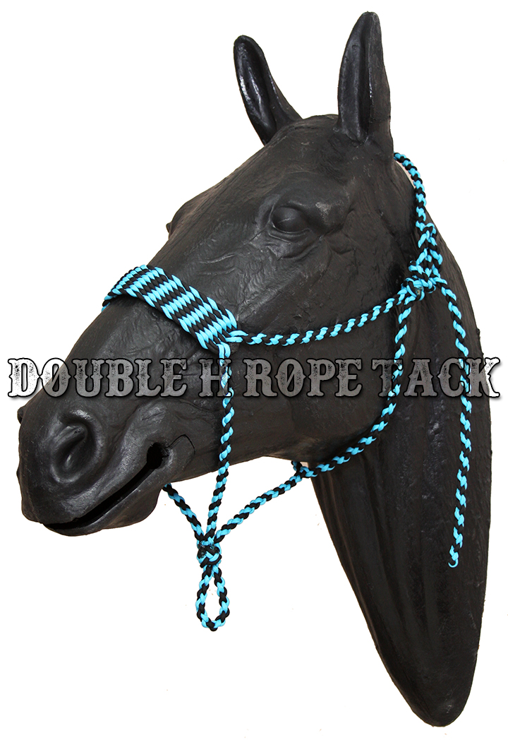 Wide noseband paracord halter for Paracord horse bridle